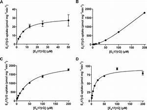 Cannabinoid Type 1 Receptor Antagonists Modulate Transport Activity Of Multidrug Resistance