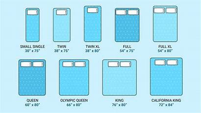 Mattress Dimensions Sizes Mattresses Guide Queen Measurements