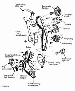 2002 Volkswagen Passat Serpentine Belt Routing And Timing