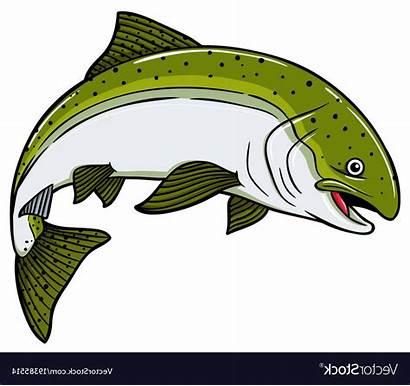 Salmon Cartoon Fish Vector Clip Unique