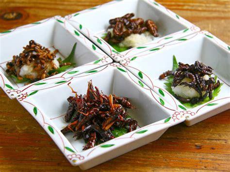 insectes cuisine edible bugs shizuoka gourmet