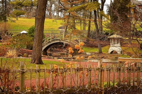 geneva il japanese tea garden at fabyan s park photo