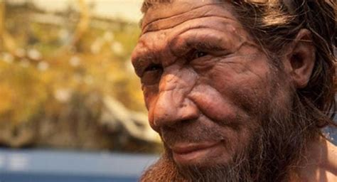neanderthal dna has subtle but significant impact on human traits new study canada journal