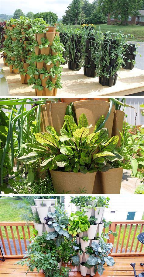 Vertical Vegetable Garden Design by 5 Vertical Vegetable Garden Ideas For Beginners Outside