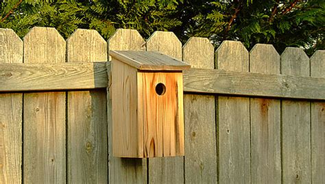 photo of lowes house plans ideas pdf diy lowes bird house plans a jewelry