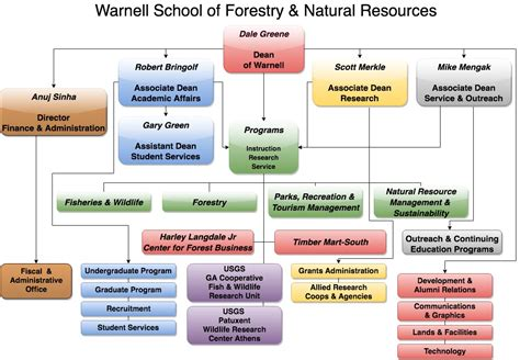 organizational chart warnell school  forestry  natural resources