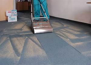 Hochflor Teppich Reinigen Tricks : teppich reinigen maschine good teppich schneid mess ~ Lizthompson.info Haus und Dekorationen