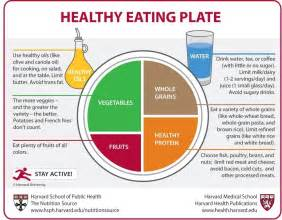 food pyramids and plates what should you really eat the nutrition source harvard t h chan