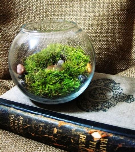 make your own moss terrarium terrarium how to make your and silk plants on pinterest