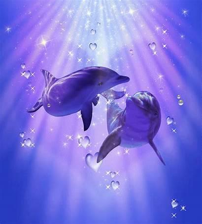Dolphin Dolphins Fanpop Delfines Dophin