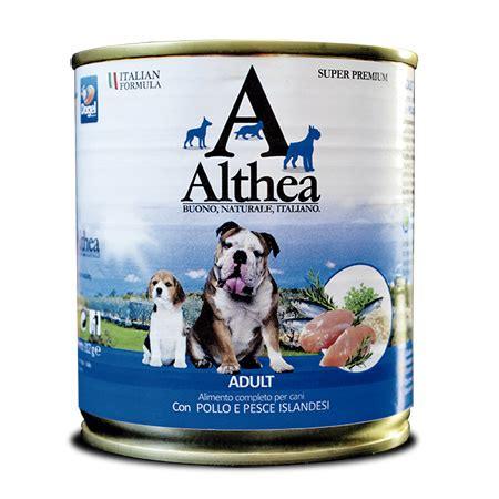 alimenti velenosi per cani alimenti per cani cibo umido alimentazione cibo cani puglia