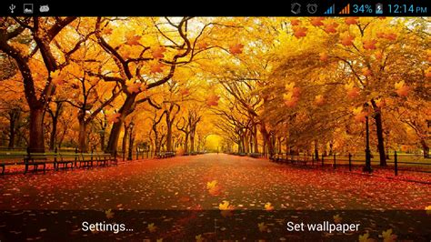 free live fall wallpapers sf wallpaper