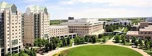 Graduate Student Resume Uregsa The University Of Engineering Graduate