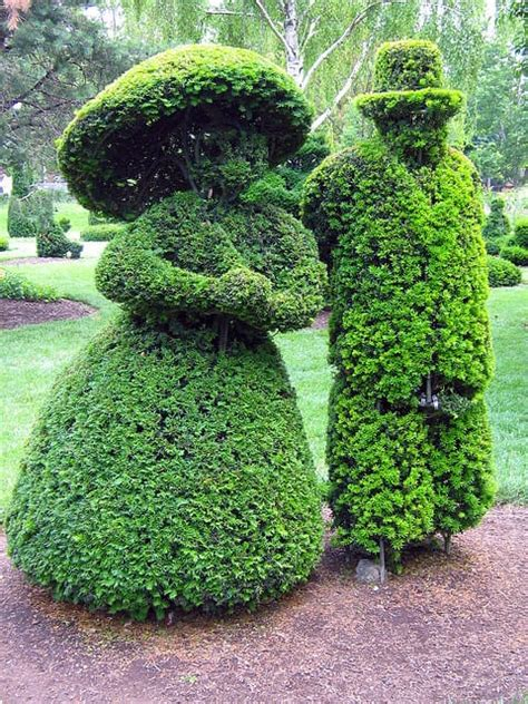10 Unusual Topiary Shapes Best4hedging