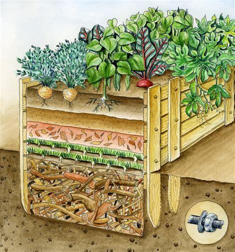 hochbeet anlegen schichten hochbeet bef 252 llen diese schichten steigern den ernte erfolg gem 252 segarten vegetable garden