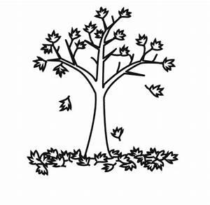 Kostenlose Malvorlage Natur Baum Mit Herbstlaub Zum Ausmalen
