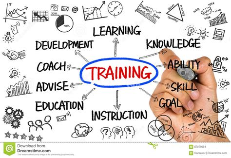 training flowchart hand drawing  whiteboard stock