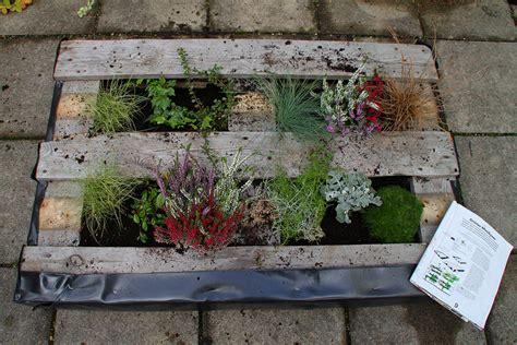 diy projekt wir bepflanzen eine palette greencity ev
