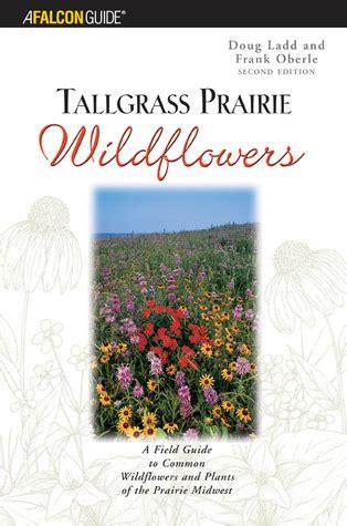 tallgrass prairie wildflowers   field guide  common