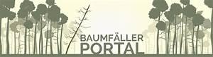 Baum Fällen Anleitung : baum f llen ber 350 spezialisten baumf llung ~ Yasmunasinghe.com Haus und Dekorationen