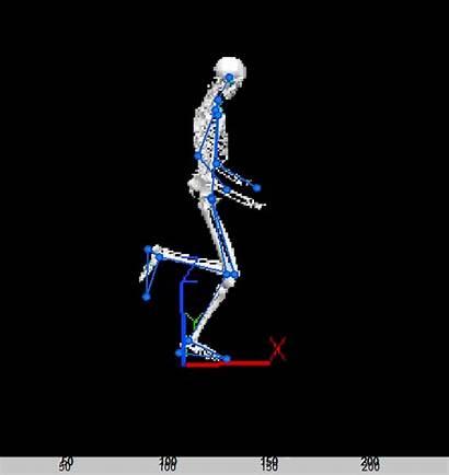 Motion Capture Analysis Markerless Works 3d Running