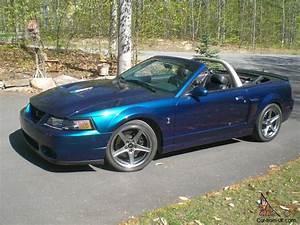 Ford : Mustang SVT COBRA MYSTICHROME