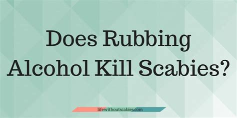 tips    clean  scabies