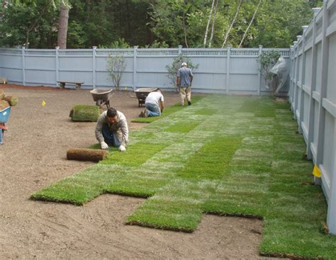 lawn laying cost sod sodding and sod installation in toronto and gta toronto sod sprinkler