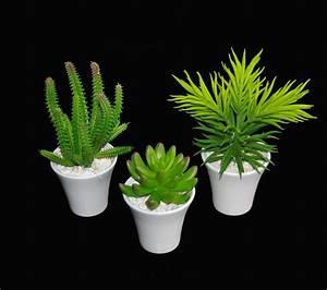 Plante Grasse Artificielle : mini plante grasse ~ Teatrodelosmanantiales.com Idées de Décoration