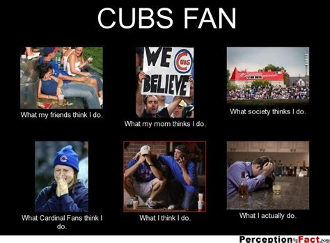 Chicago Cubs Memes - cubs fan what people think i do what i really do perception vs fact