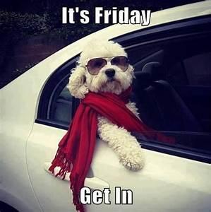 The 25+ best Long weekend meme ideas on Pinterest | Work ...