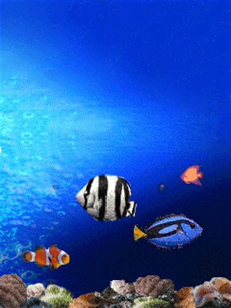 Fish Animated Wallpaper For Mobile - animated fish wallpaper for mobile top backgrounds