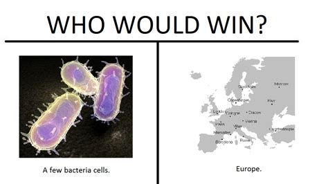 Who Would Win Memes - are quot who would win quot memes still worth any sort of investment memeeconomy