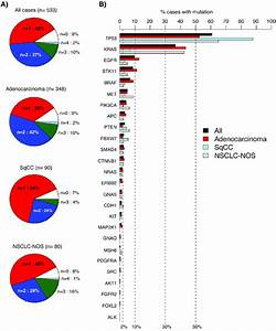 Detected Variants In 533 Consecutive Lung Cancers Analyzed