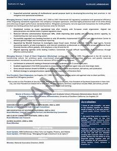 executive resume sample chief executive officer With non profit program director resume sample