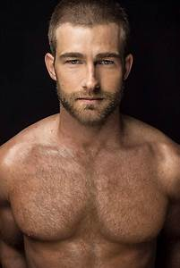 Barry sheen hairy chest