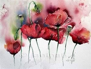 Aquarell Malen Blumen : 11 besten bilder bilder auf pinterest blumenbilder ~ Articles-book.com Haus und Dekorationen