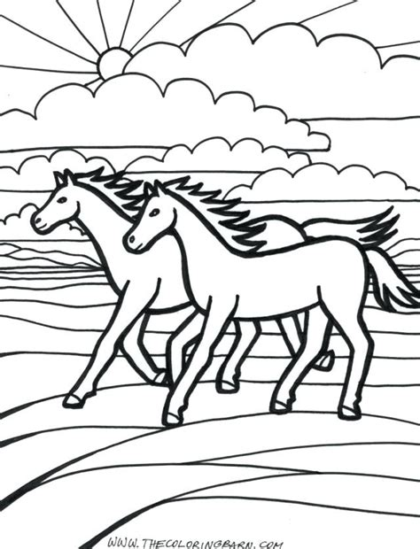 coloring pages  horses  foals  getcoloringscom  printable colorings pages  print