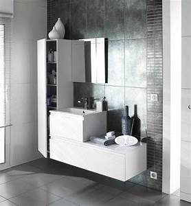 Meuble contemporain modele evasion http wwwlapeyrefr for Meuble colonne salle de bain lapeyre