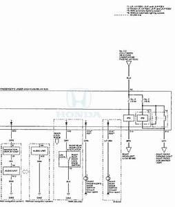 Honda Accord  Circuit Diagram  Power Door Locks