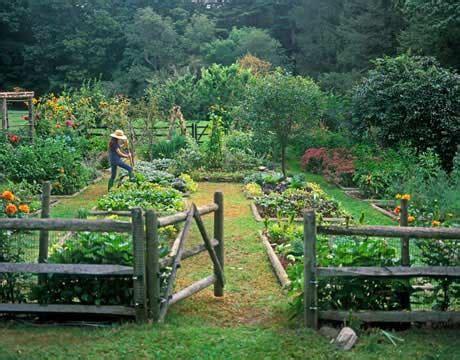Kitchen Garden  Organic Herb Kitchen Gardening