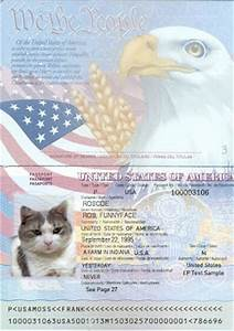 Fake us passport template for Us passport photo template