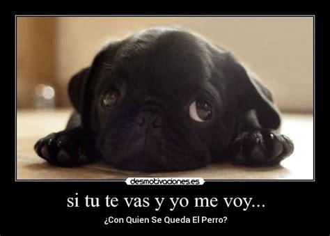Si Tu Te Vas Y Yo Me Voy...