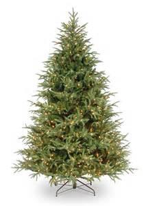 7ft Slim Christmas Tree Pre Lit by 5 5ft Pre Lit Frasier Grande Fir Feel Real Artificial