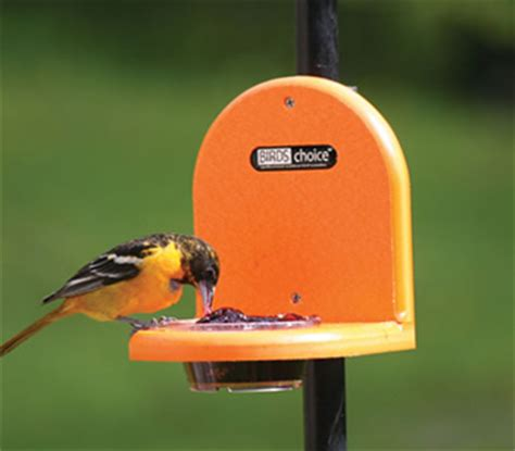 duncraftcom birdschoice pole mount jelly feeder