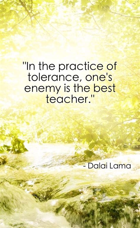 Dalai Lama Tolerance Quote