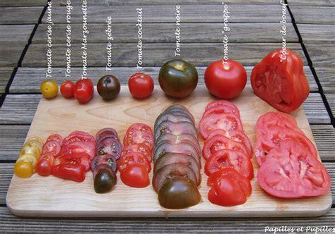 image drole cuisine tomates oui mais lesquelles