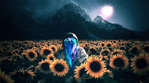 wallpaper astronaut sunflowers  creative graphics