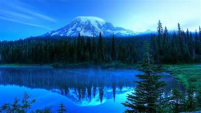 Background Sunset Forest Lake 1440 2560 Backgrounds