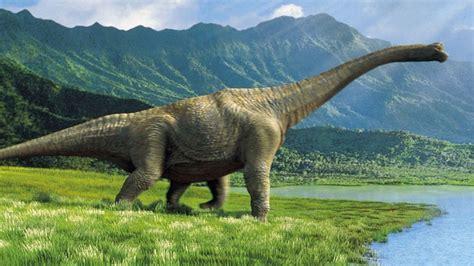 dinosaurs  wallpaper wallpaperscom